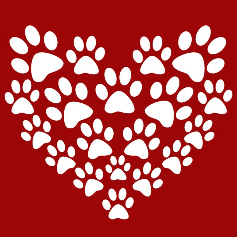 logótipo da susana Dog walker e pet sitting